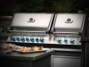 Outdoor Kitchen Appliances: Napoleon